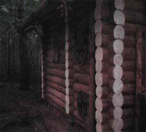 Как подлечить деревянный дом?